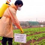 4 nguyên tắc trong sử dụng phân bón, thuốc bảo vệ thực vật