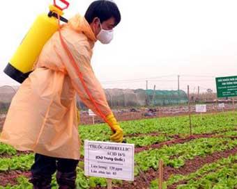 4 nguyên tắc trong sử dụng phân bón, thuốc bảo vệ thực vật - 4 nguyen tac trong su dung phan bon thuoc bao ve thuc vat