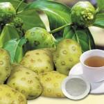 Khám phá công dụng nước ép trái Nhàu - kham pha cong dung nuoc ep trai nhau 150x150