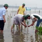 Kỹ thuật trồng cây Đước vòi ( Đâng )