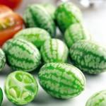 Cách trồng dưa hấu mini - jpg75 150x150