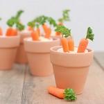 Cách trồng Cà Rốt mini - jpg80 150x150