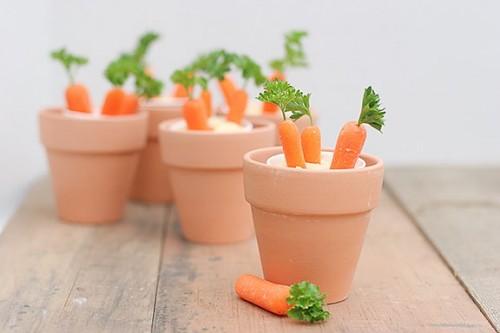 Cách trồng Cà Rốt mini - jpg80 500x333