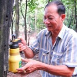 Kỹ thuật tạo trầm cho cây trầm hương