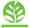 Nuôi trồng - Kỹ thuật nuôi trông