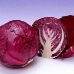 Lý do nên ăn bắp cải tím