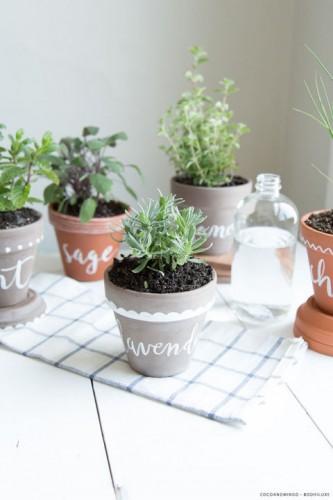 11 ý tưởng trồng cây thảo mộc trong nhà - 11 y tuong trong cay thao moc trong nha 2 112127828 333x500