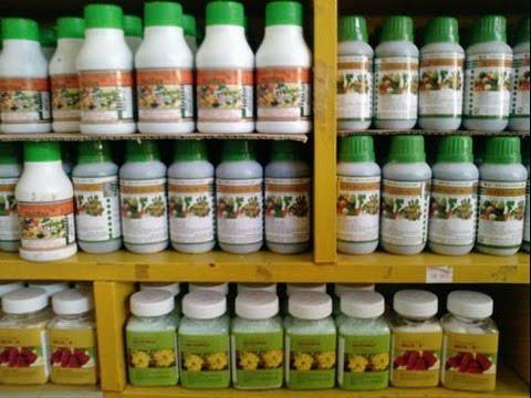 Cách sử dụng phân bón lá trên cây trồng hiệu quả - cach su dung phan bon la