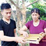 Mô hình nuôi ong chúa lấy sữa thu nhập 250 triệu đồng/năm ở Nghệ An