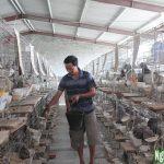 kĩ thuật nuôi chim bồ câu an toàn - 55b05d3217254 150x150