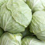 10 công dụng chữa bệnh của bắp cải