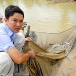 Làm giàu từ mô hình nuôi cá chạch bùn - nh 1 anh thsi bon ao nui cs ch ch bc2b7n chu n b thu ho ch bsn100443722 jpg 150x150