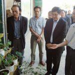 Những điều cần lưu ý trong sản xuất rau thủy canh - trong rau thuy canh 150x150