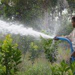 Cú hích giúp nhà nông xây dựng vườn cây ăn trái - vuon cay an trai 1462325828 150x150