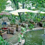 Thoải mái, mát dịu và ấn tượng với khu vườn thiết kế phong thủy
