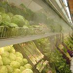 Cách bảo quản rau quả tươi bằng oxy không khí, nước sôi, vỏ tôm cua…