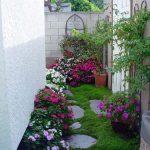 Yếu tố cây cối trong trang trí sân vườn