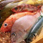 Làm sao để phân biệt cá biển tươi và cá biển nhiễm độc? - cach phan biet ca bien nhiem doc 150x150