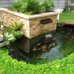 Trước nhà nên bố trí hồ nước