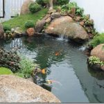 Ao hồ trong sân vườn - ho ca koi 08 thumb 150x150