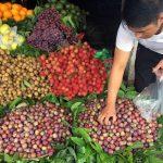 Hoa quả Trung Quốc tràn lan: Kiểm dịch bằng… cảm quan