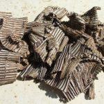 Phương thuốc từ cây Đỗ Trọng