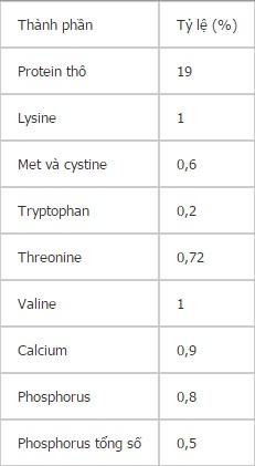 Dinh dưỡng cần thiết cho Heo nái nuôi con - nuoi lon11