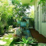 Trồng cây trong sân theo phong thủy - phong thuy san vuon 150x150