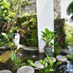 Phong thủy cho sân vườn nhỏ - san vuon 150x150
