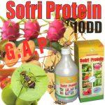 Chế phẩm Sofri Protein diệt trừ ruồi đục quả - sorfi protein 150x150