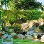 Vườn đá trong thiết kế sân vườn - tieu canh 4 anhnen1 150x150