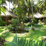 Vườn trước và vườn sau - tieu canh san vuon2 150x150