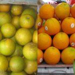 Mẹo đơn giản nhận biết trái cây Trung Quốc - trai cay trung quoc 121 150x150