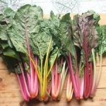Cách trồng rau Cải cầu vồng - cach trong rau cai cau vong3 300x225 150x150