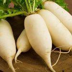 Hướng dẫn cách trồng rau Cải Củ ( củ Cải )