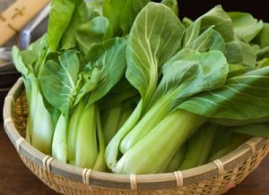 Chia sẻ cách trồng rau Cải Thìa ( Cải Bẹ ) tại nhà - cach trong rau cai thia2 300x218