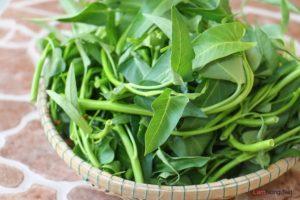 Hướng dẫn cách trồng rau Muống nước - cach trong rau muong nuoc4 300x200
