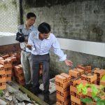 Bình Thuận: Phát triển mô hình nuôi Dông thịt - dsc4737 jpg 150x150