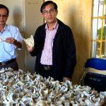 Xây dựng mô hình nuôi chim Yến phục vụ đào tạo nghề