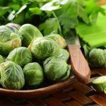 Hướng dẫn cách trồng rau Bắp Cải tí hon tại nhà - huong dan cach trong rau bap cai ti hon tai nha4 150x150