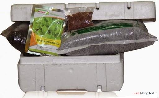 Trồng rau sạch trong thùng xốp một cách hoàn hảo tại nhà - trong rau sach trong chau xop mot cach hoan hao tai nha 1