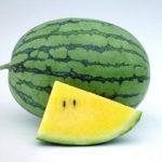 Kỹ thuật trồng dưa hấu ruột vàng