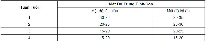 Kỹ thuật nuôi gà rừng - mat do chuong nuoi ga rung