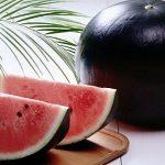 kỹ thuật trồng dưa hấu đen