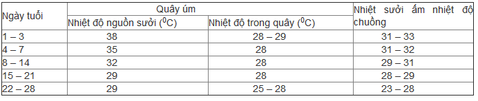 Kỹ thuật nuôi gà rừng - suoi am cho ga rung 1