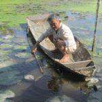 Lão nông miền Tây kiếm tiền tỷ nhờ nuôi cá nước ngọt ở cửa biển - lao nong mien tay kiem tien ty nho nuoi ca nuoc ngot o cua bien 150x150