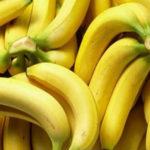 Nuôi tôm bằng trái chuối - p banana 150x150