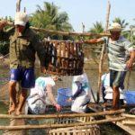 Kiểu thu mua cá, tôm lạ đời của thương lái Trung Quốc - kieu thu mua ca tom la doi cua thuong lai trung quoc 150x150