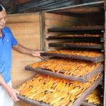Mô hình chế biến tăng giá trị cho khoai lang - mo hinh che bien tang gia tri cho khoai lang 150x150