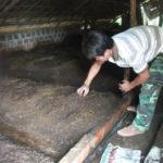 Trại chăn nuôi khép kín cho thu nhập không giới hạn